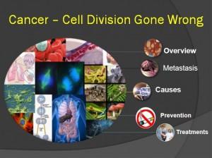 Cancer 1
