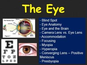Lesson 11 Eye 1