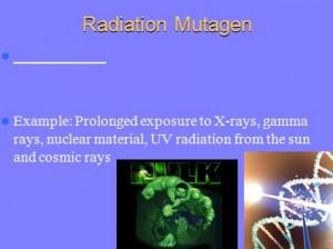 L6 Mutations 3