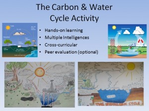 WaterCarbon Cycle