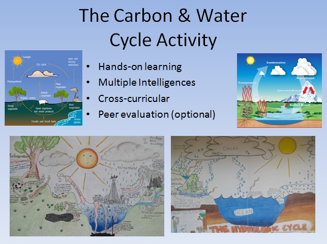 water and carbon cycle diagram activity. Black Bedroom Furniture Sets. Home Design Ideas