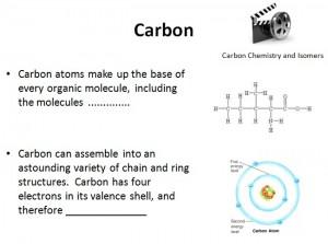 L2 Carbon 3
