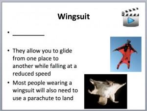 L4 Animals Fly 3